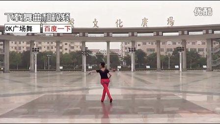 临盘立华广场舞 美丽的中国我对你说 超清