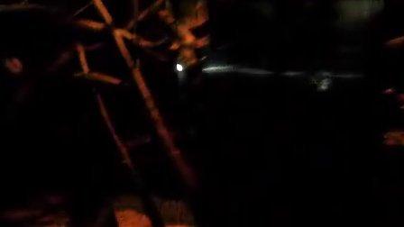 上野动物园 蜜熊 キンカジュー
