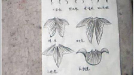 花鸟写意画 卢考森蛋种金鱼的画法