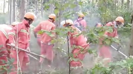 割森林防火隔离带