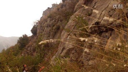 Roaschia climbing
