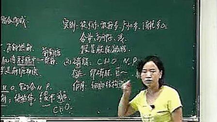 高二生物体验课-刘媛