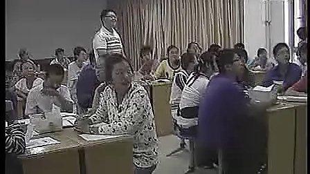 全国中学化学优质课观摩评比(初中化学)
