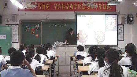 八年级美术优质课展示《独具魅力的面具》张老师
