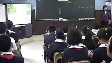 小学六年级音乐优质课《尼泊尔尼歌欣赏》视频课堂实录