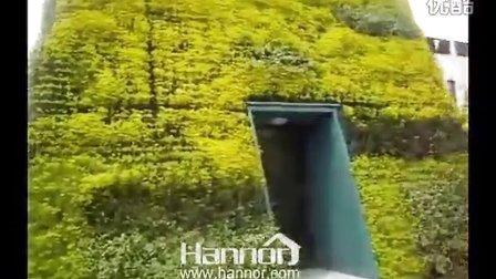 海纳尔朱家角新城幼儿园墙体绿化项目