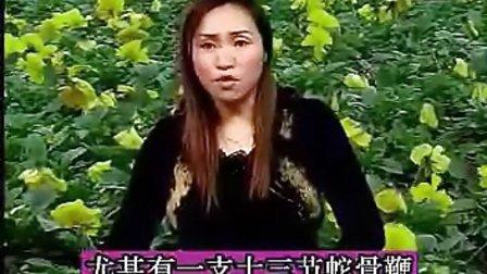 温州鼓词《龙青天传奇》王芳(1集)