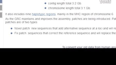 Patches and Haplotypes in the Human Genome