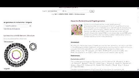 EnsemblGenomes- Extending Ensembl across taxonomic space