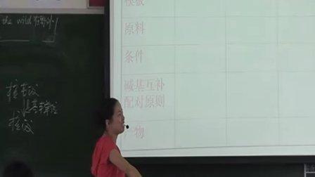 生物―高三―生物图表专题基因表达核心知识讲解―人教课标版―何彩霞―黄圃中山二中