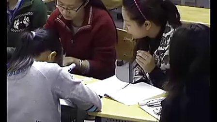 《细胞中糖脂质》 杨文仲 评课 高一生物优质课展示