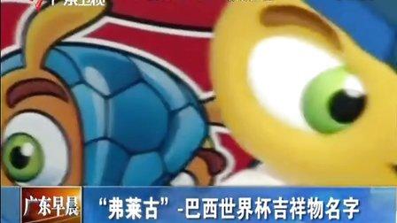 """""""弗莱古""""-巴西世界杯吉祥物名字 [广东早晨]"""