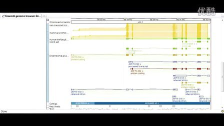 Demo 2- Structural variation for a region - YouTube
