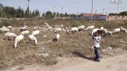 放羊鞭子手工制作