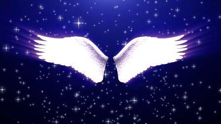 翅膀的画法步骤图解