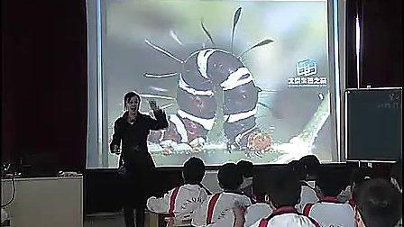 初二生物优质课展示 《动物行为》李老师
