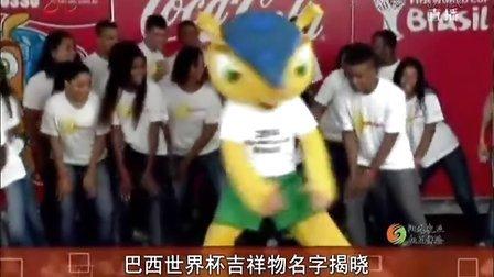 巴西世界杯吉祥物名字揭晓[共度晨光]