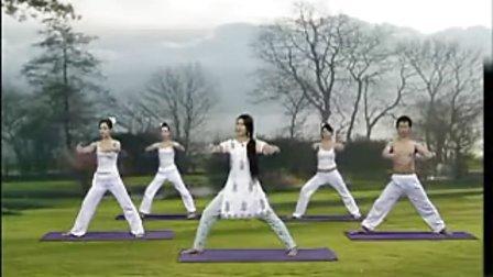王媛瑜伽排毒纤体36式美体瑜伽瘦身瑜伽8