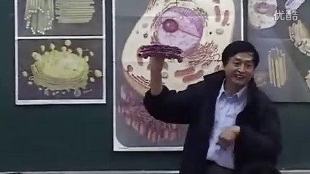 高一高中生物优质示范课《第一节 细胞的结构和功能05》