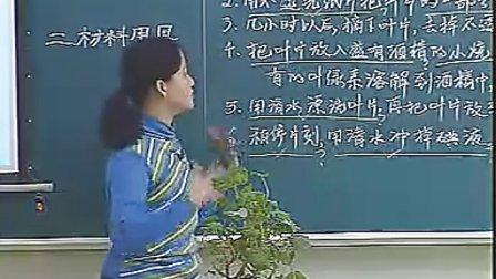 七年级初中地理优质课课堂实录视频专辑
