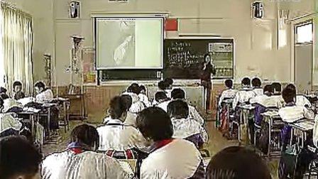 《生物圈中有哪些绿色植物》何健君-人教课标版初中生物七年级优质课