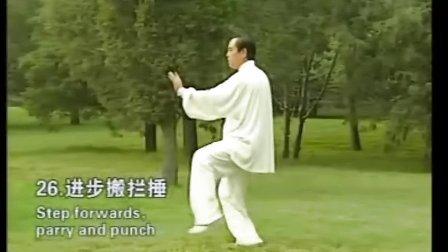 《传统28式杨式太极拳》图片