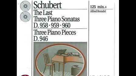舒伯特钢琴奏鸣曲集图片