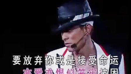 刘德华04演唱会图片