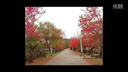 福建农林大学风景