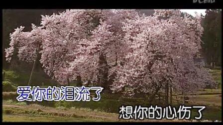 雅鲁藏布情歌米线