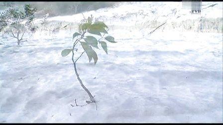 TVB翡翠卫星台-费沙岛Fraser Island特辑 之二
