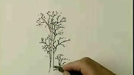 手绘教程树的画法1