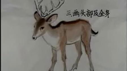 动物画技法 - 专辑 - 优酷视频