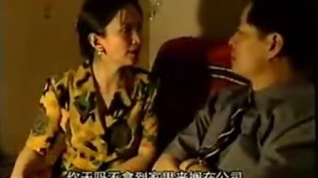 电视连续剧《来来往往》(7)许晴、濮存昕、吕丽萍