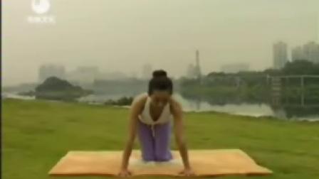 7日瘦身瑜珈第16集侧抬腿式