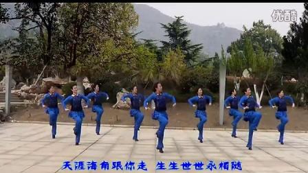 姑娘追 纯艺舞吧广场舞 gcw.cntaiji.org(团队正面演示)
