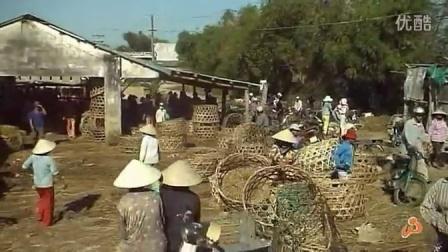 越南和柬埔寨