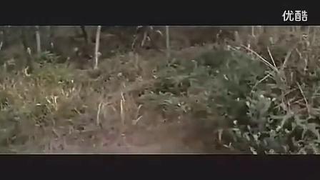 黄梅戏老电影 盘丝洞