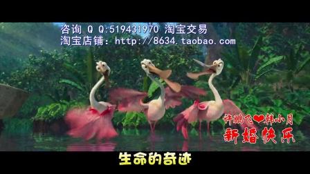 小苹果广场舞婚礼mv视频片歌曲郑州婚礼准备婚礼现场范范黑人婚礼