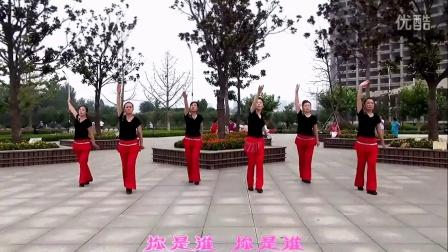 秋歌广场舞 - 你是我最爱的女人图片