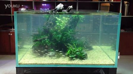 7s鱼缸内部结构