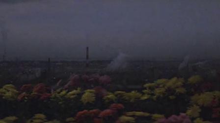 哥斯拉1971哥斯拉对黑多拉