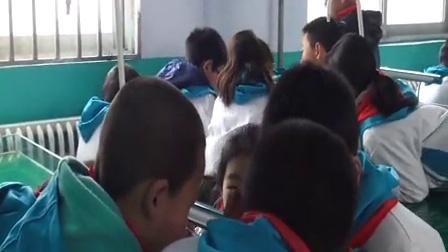 《有趣的磁铁游戏》李高峰郑州市上街区外国语小学
