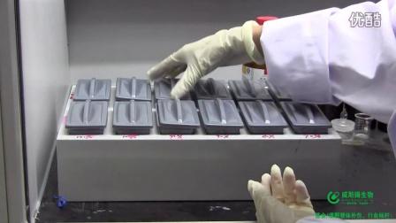 威斯腾生物技术视频—石蜡切片脱蜡步骤