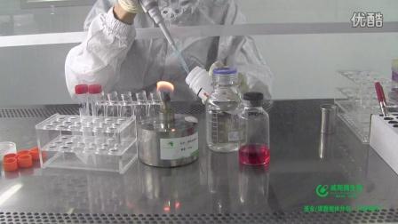 裸鼠成瘤实验方法