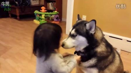 可爱小北鼻与狗狗搞笑视频集锦
