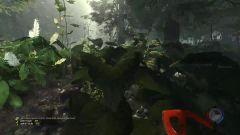 ★森林★The Forest《籽岷的新游戏体验 多人联机互助生活形式 默寒