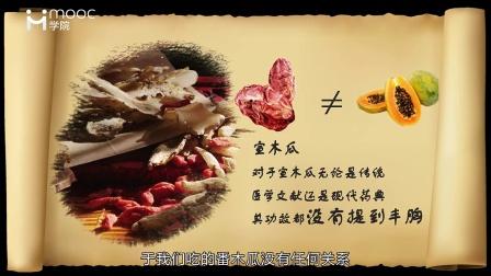 MOOC水果课:吃木瓜丰胸吗?