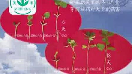 二硝基苯胺类除草剂的要害和安全性