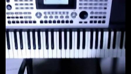 鸿雁电子琴谱曲
